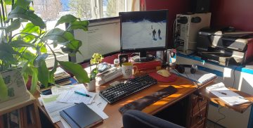 Wooden desk in the sun, red walls behind. Two computer monitors, keyboard and books and papers strewn across the desk. Sun streaming in, filtered through the large leaves of a night blooming cereus plant. Small orchid and coffee cup on desk with all the clutter.